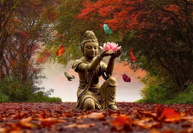 meditação e aromaterapia